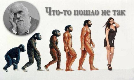 http://ura.ru/images/news/upload/news/180/588/1052180588/52c8aaeae1ad412bf6eb8cf4e080c6eb.jpg