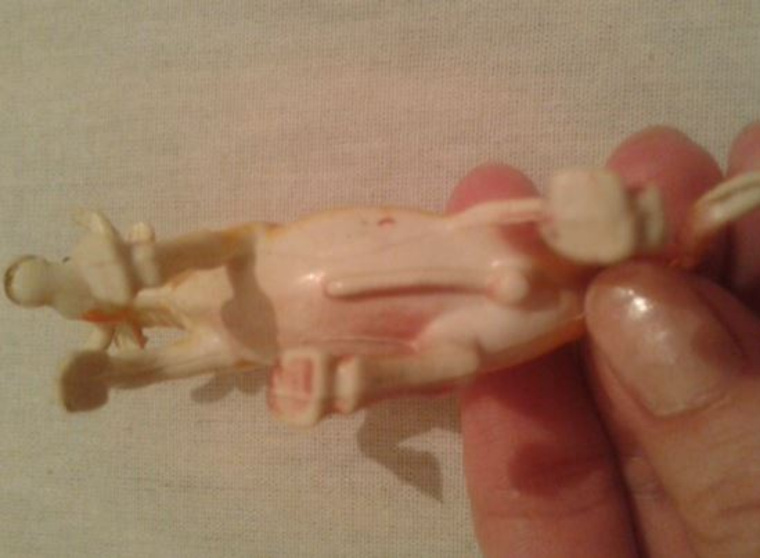 Фото женских половых органов с игрушками