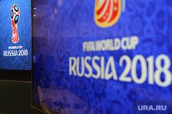 В России выбрали талисмана Чемпионата Мира по футболу-2018